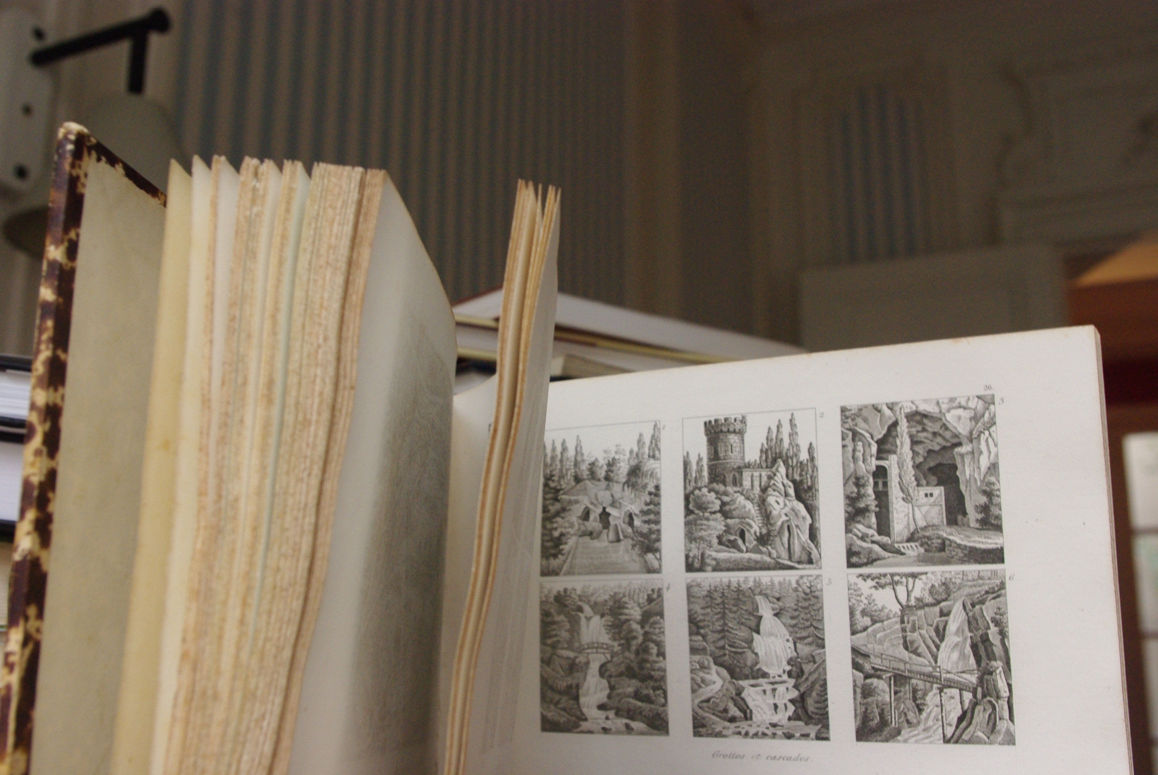 Art des jardins librairie histoire et soci t - Effroyables jardins histoire des arts ...
